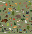 taiga biome boreal snow forest seamless pattern vector image