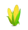 corn ears icon vector image vector image