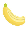 flat design icon of banana in ui colors vector image