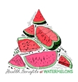 Watermelon Benefits 02 A vector image