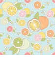 seamless pattern with citrus vector image