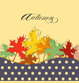 maple leaf in bright autumnal colors background vector image vector image