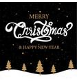 merry christmas happy new year calligraphy sign vector image