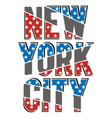 new york city stars vector image vector image