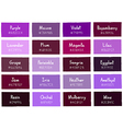 Purple Tone Color Shade Background with Code vector image vector image