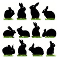 Rabbit02 vector | Price: 1 Credit (USD $1)
