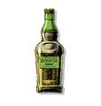 scotch vector image vector image