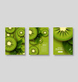 sliced kiwi poster set vector image