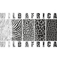 wild africa vector image vector image