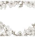almond blossom branch border vintage botanical vector image