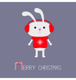 Cute rabbit in red pullover with snowflake vector image