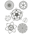flowers 001 vector image vector image