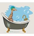 Giraffe sitting in the bathroom vector image