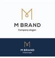 m brand logo vector image