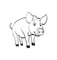 pig sketch chinese new year 2019 vector image vector image