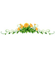 Plant with yellow flowers vector image vector image