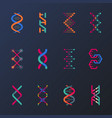 set of isolated dna helix or spirals cell vector image vector image
