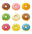 set tasty donuts vector image