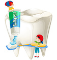 Boys with toothbrush brushing teeth vector image