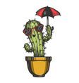 cartoon cactus plant sketch engraving vector image