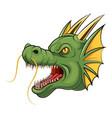 mascot head dragon cartoon vector image vector image
