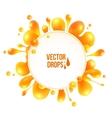 orange liquid splash with round banner vector image vector image