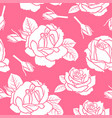 roses flowers pattern seamless on pink background vector image vector image