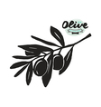 Stock of olive branch silhouette vector image vector image