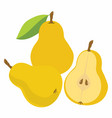 yellow pear with leaf vector image