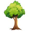 A giant tree vector image