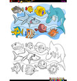 fish animal characters group coloring book vector image