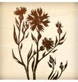 ornamental cornflower flower card fuchsia vector image