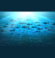 shoal of sea fish in ocean vector image vector image