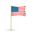american waving flag with the flagpole vector image vector image