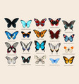 big set high detailed butterlies vector image vector image