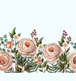 border with english peachy roses vector image vector image