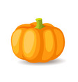 bright orange pumpkin icon isolated organic vector image