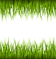 Green grass like frame isolated on white Floral vector image vector image