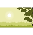 Landscape of grass with tree at spring vector image vector image