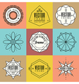Set line art insignia retro vintage design element