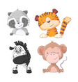 set zebra monkey tiger cub raccoon cartoon vector image vector image