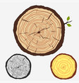 tree rings cut stump with forest trees vector image