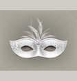 universal carnival mask with feathers and vector image