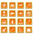 veterinary icons set orange vector image vector image