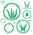 Aloe Vera vector image
