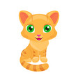 cute red cat cat vector image