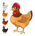 Group of funny hens in different colors vector image vector image