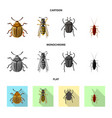 isolated object of insect and fly symbol set of vector image vector image