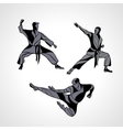 Martial arts poses silhouette Karate fighters vector image vector image