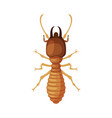 termite harmful insect pest control and vector image vector image